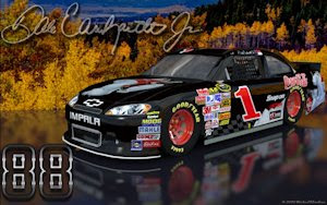 Dale Earnhardt Jr Coke Bear Retro 1 Outdoor