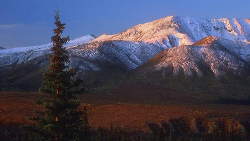 Denali, Alaska.jpg