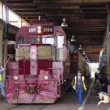 03-10-15 Fort Worth Stock Yards - _IMG0849.JPG