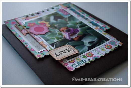 Bear_05-2