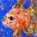 Goldfish- Fine Art America Version.jpg