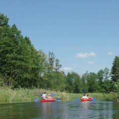 Rzeka Łyna.