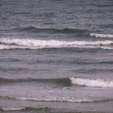 Galveston Vacation 2011 - 115_0239.JPG