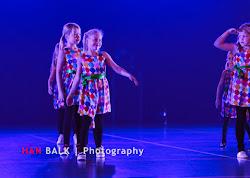 Han Balk Voorster Dansdag 2016-4409-2.jpg