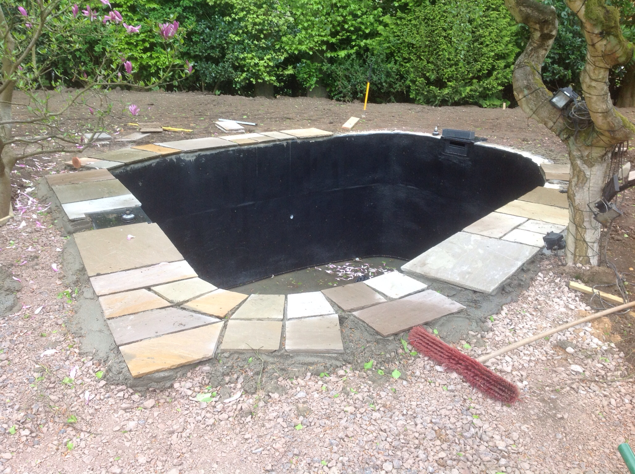 Mark Hobden Main Koi Pond Build Growing On Tank