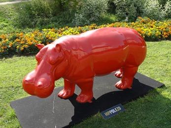 2018.07.22-065 hippopotame