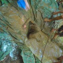 Taborjenje, Lahinja 2006 1.del - IMG_4916.JPG