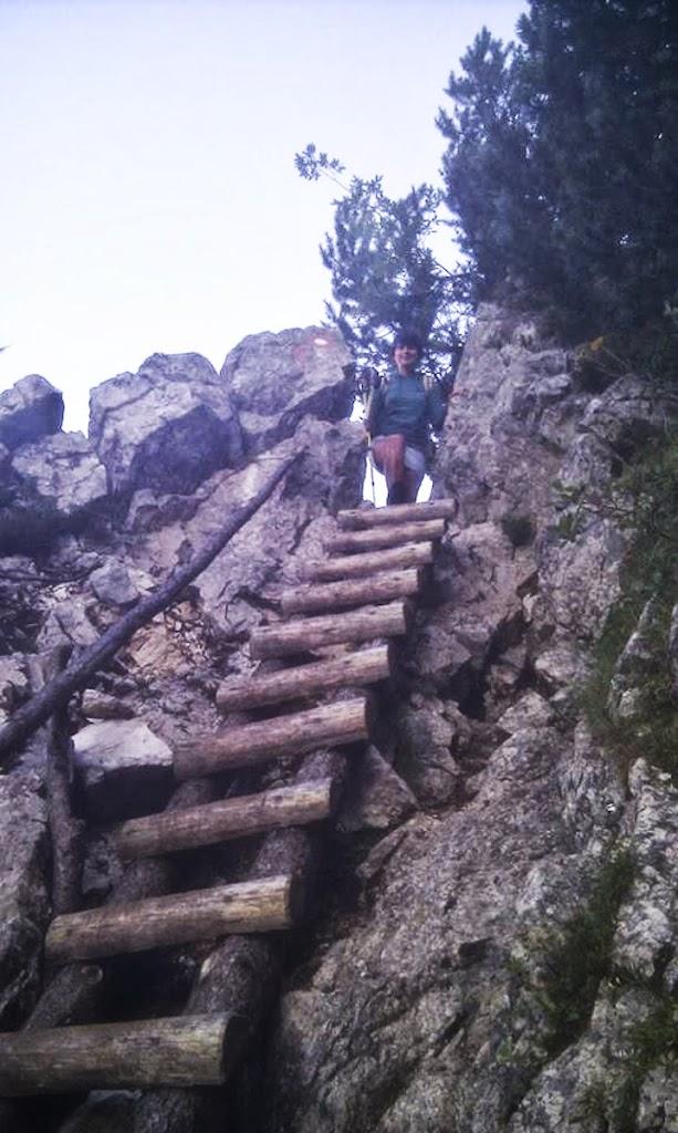 Kamnik–Savinja Alps - Vika-2.jpg