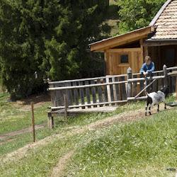 Wanderung Tschafon 23.06.17-8997.jpg