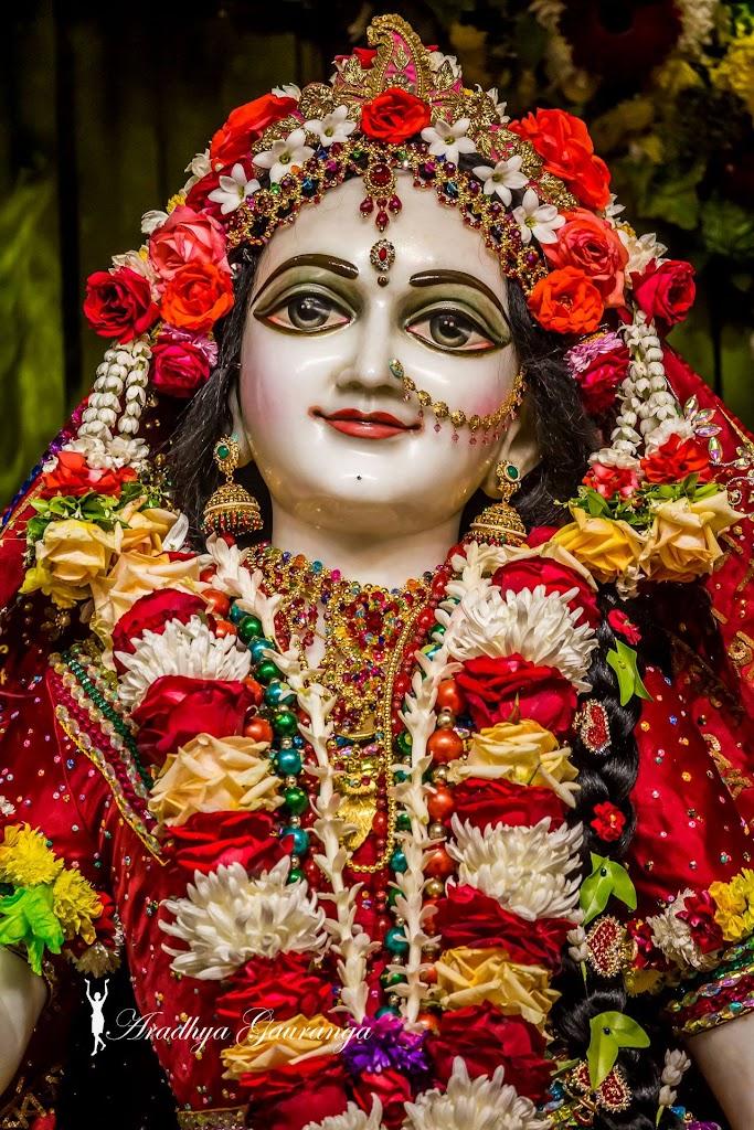 ISKCON Mayapur Deity Darshan 14 Jan 2017 (23)