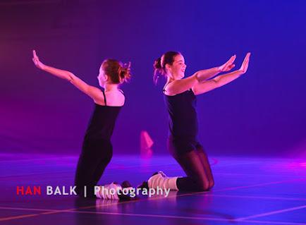 Han Balk Voorster Dansdag 2016-4352-2.jpg