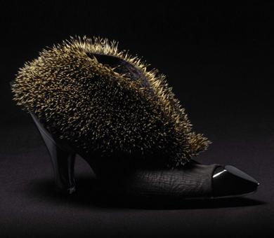 Taxidermy Hedgehog