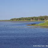 04-06-12 Myaka River State Park - IMGP9905.JPG