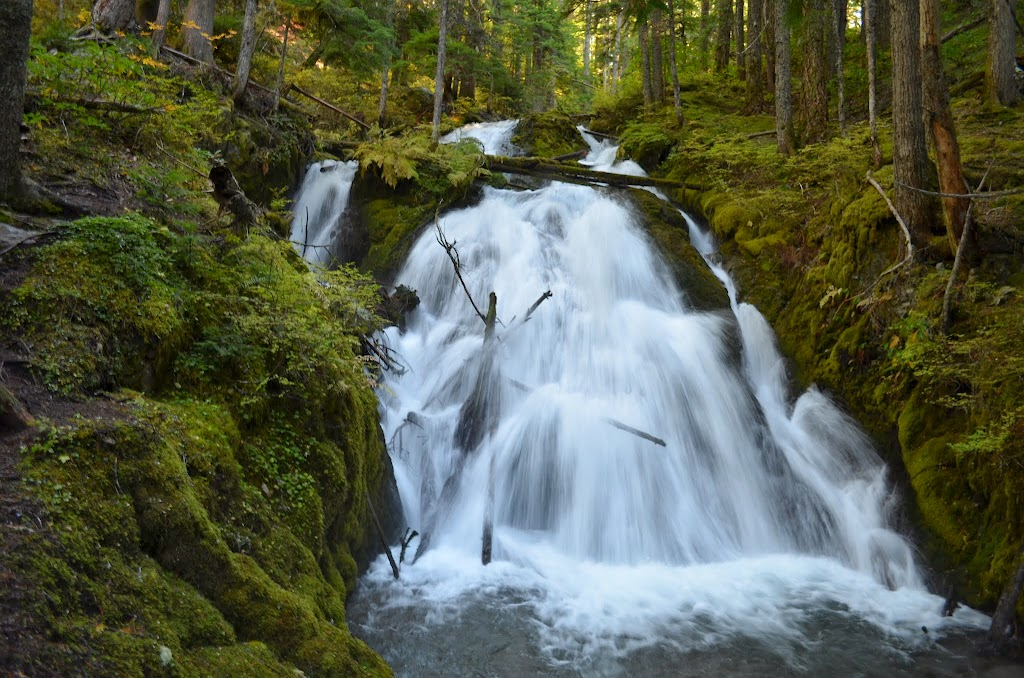 Little Zigzag Falls Oregon The Waterfall Record