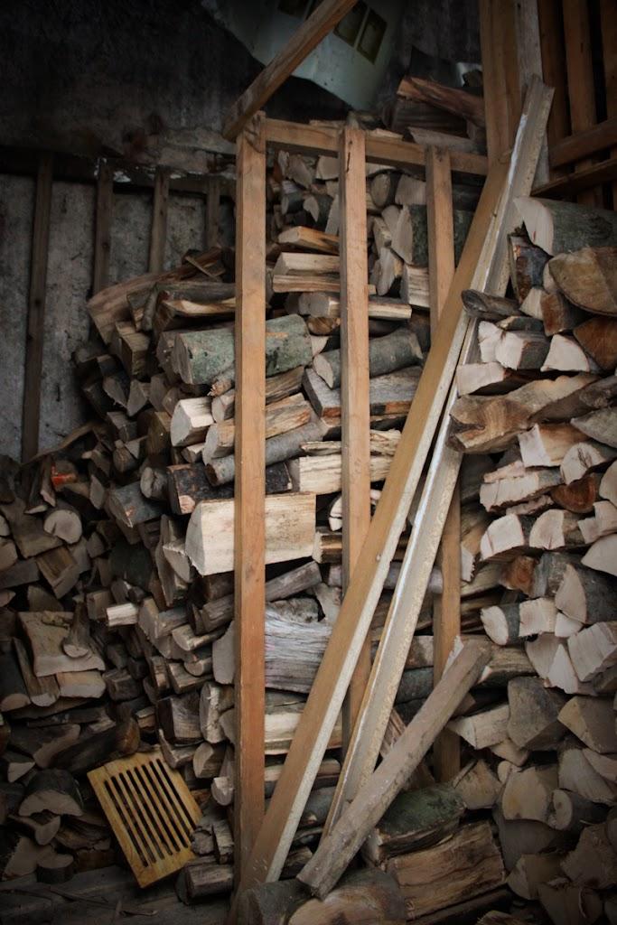 Wood in my life - Vika-9110.jpg
