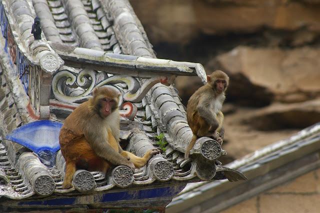 Dans un temple du Shibao Shan, 8 août 2010. Photo : J.-M. Gayman