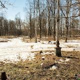 Ясногорск. Городской парк почти в центре города, но в недосягаемости коротких рук тех, кто должен был следить за его состоянием