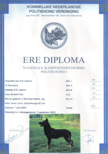 Ere Diploma Cris