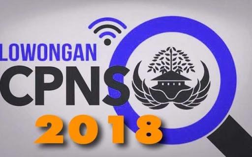 Inilah Prioritas CPNS 2018