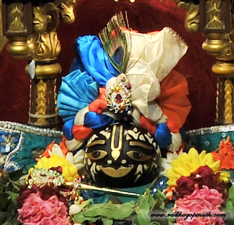 ISKCON Chowpatty Deity Darshan 18 Dec 2015 (21)