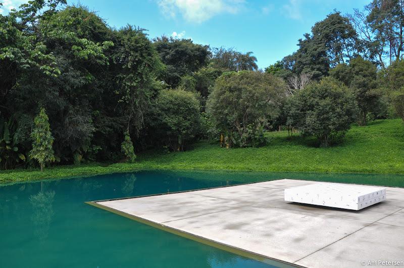 Galeria Adriana Varejão - Inhotim - Brumadinho, Minas Gerais. Fotos de Inhotim. Foto numero 2.