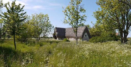 2015-06-13 052_051(Gotland)c.jpg