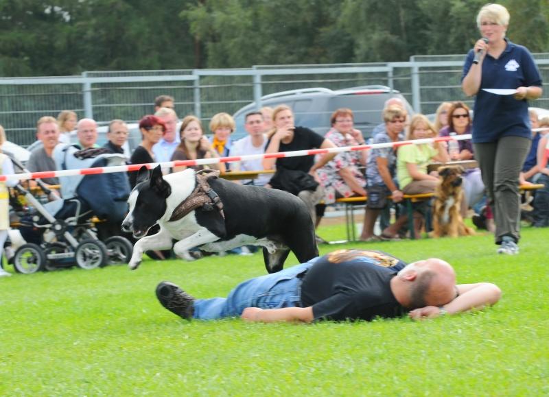 20100914 Sommerfest - DSC_4368.JPG