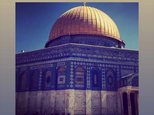 Save Palestine With Islam