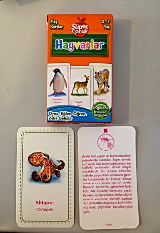 2-7-yaş-flaş-kartlar