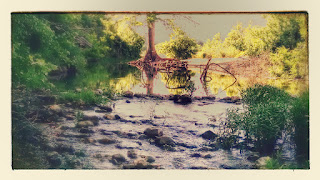 IMG_20150502_172643186-EFFECTS