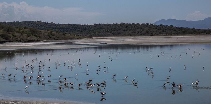 lake-magadi-5