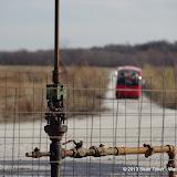 01-19-13 Hagerman Wildlife Preserve and Denison Dam - IMGP4097.JPG