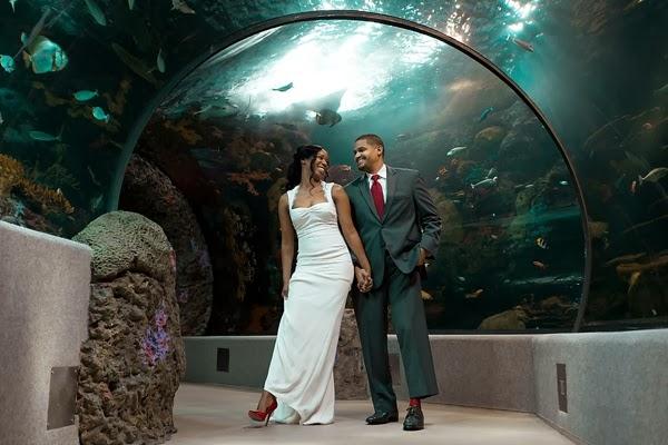 Virginia Aquarium Anniversary Session By The Girl Tyler