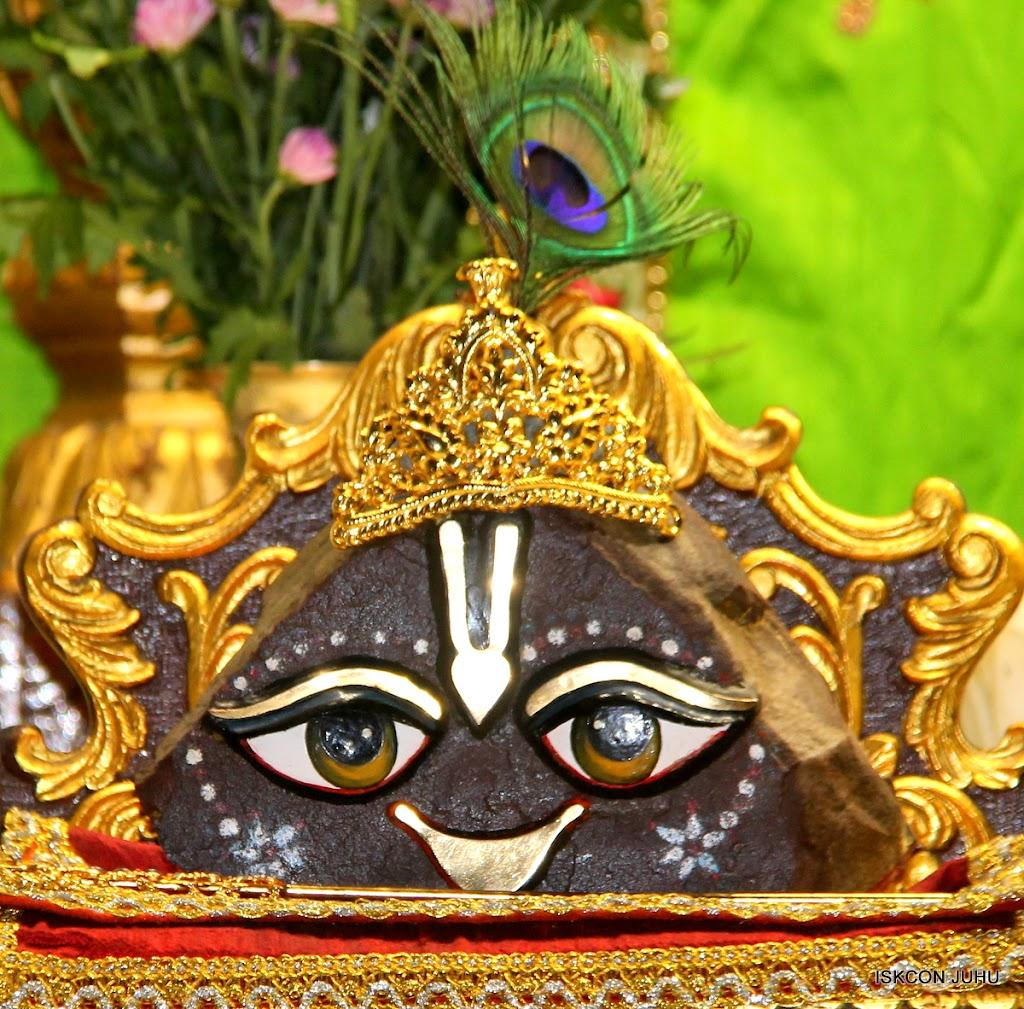 ISKCON Juhu Mangal Deity Darshan on 01st May 2016 (21)
