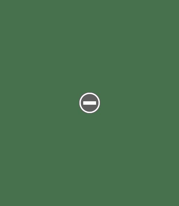 Blaireaux en métal - Page 2 IMG_1999%2B%2528Custom%2529