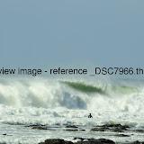 _DSC7966.thumb.jpg