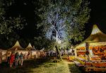 stage_Afrika_Tage_Wien_© 2017_christinakaragiannis.com. (49a).JPG