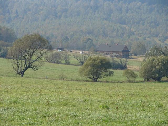 Rajd Kamień-Zyndr24.09.2010 - Obraz%2B081_1.jpg
