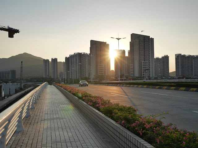 dragonfly flying over the Changsheng Bridge in Zhuhai as the sun sets