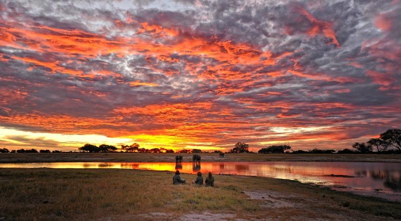Parque Nacional de Hwange, Zimbabwe