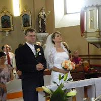 Svadba p.organistky