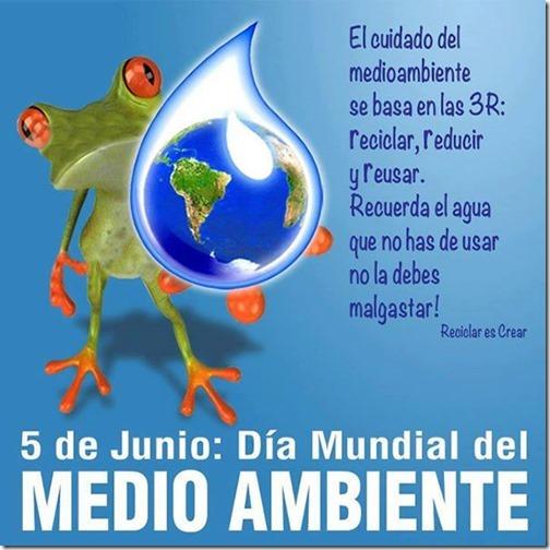 dia-mundial-del-medio-ambiente_008