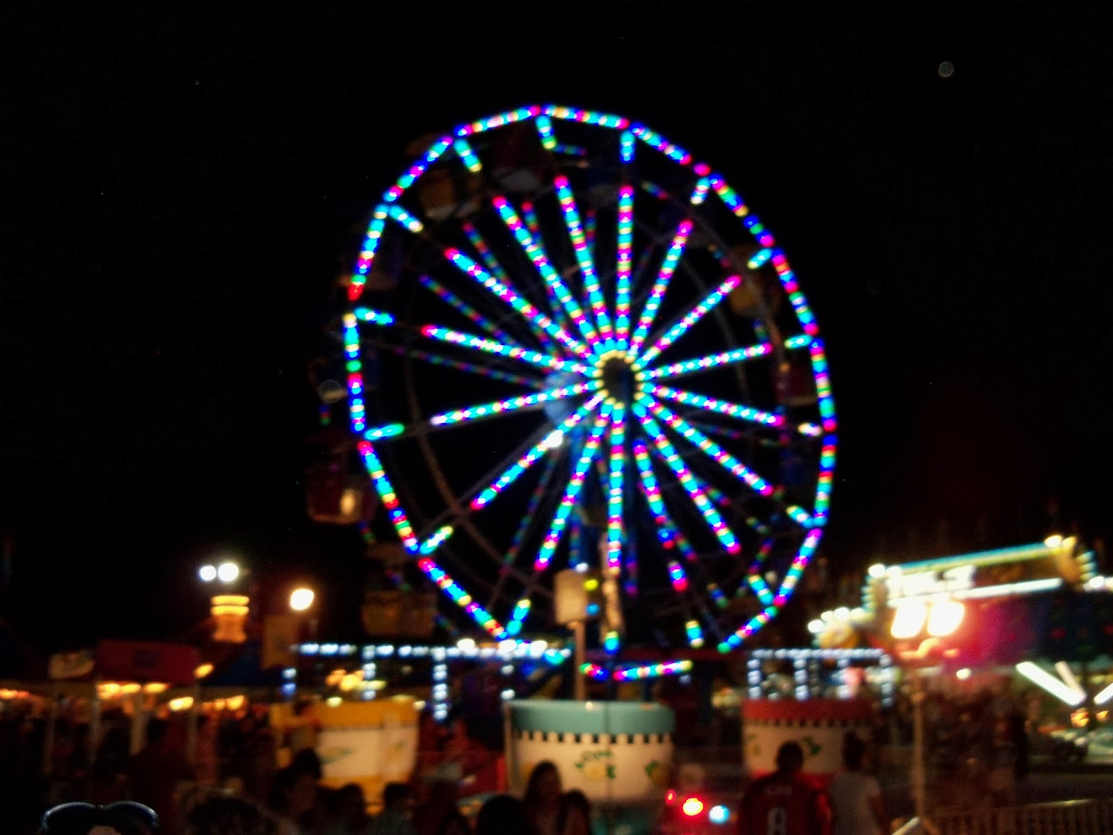 Fort Bend County Fair 2013 - 115_8023.JPG