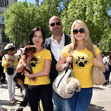 OIC - ENTSIMAGES.COM - Pola Pospieszalska K9 Angels, Marc Abraham and Victoria Eisermann K9 Angels at the Puppy Farming Protest - demonstration and photocall 24th May 2016, rally and photocall in London's Parliament Square to raise awareness of the UK's cruel puppy farming trade, in association with PupAid, Boycott Dogs4Us and C.A.R.I.A.D.  Photo Mobis Photos/OIC 0203 174 1069