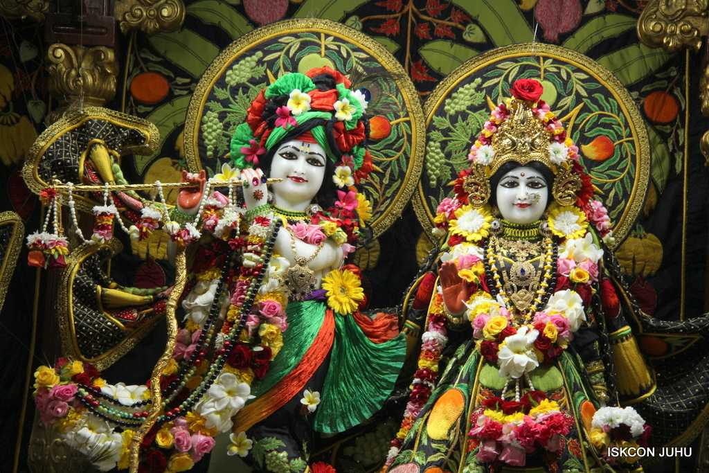 ISKCON Juhu Sringar Deity Darshan on 19th Nov 2016 (9)