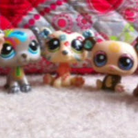 who is LPS lovers contact information