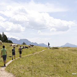 Wanderung Hanicker Schwaige 18.07.15-9025.jpg