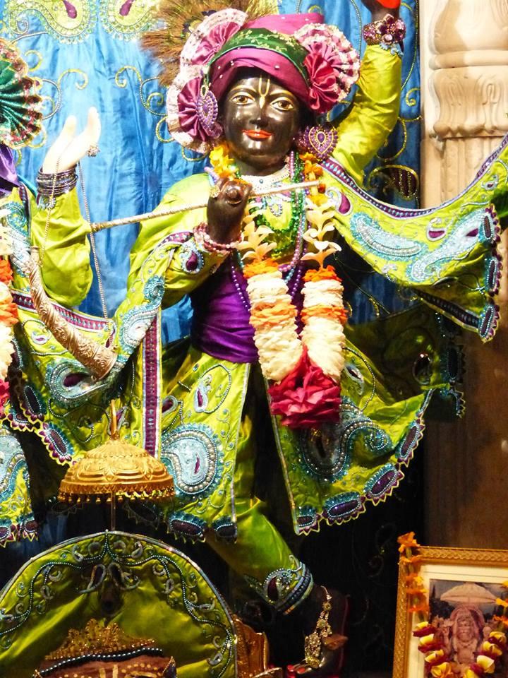 ISKCON New Govardhan Deity Darshan 01 Mar 2016 (10)