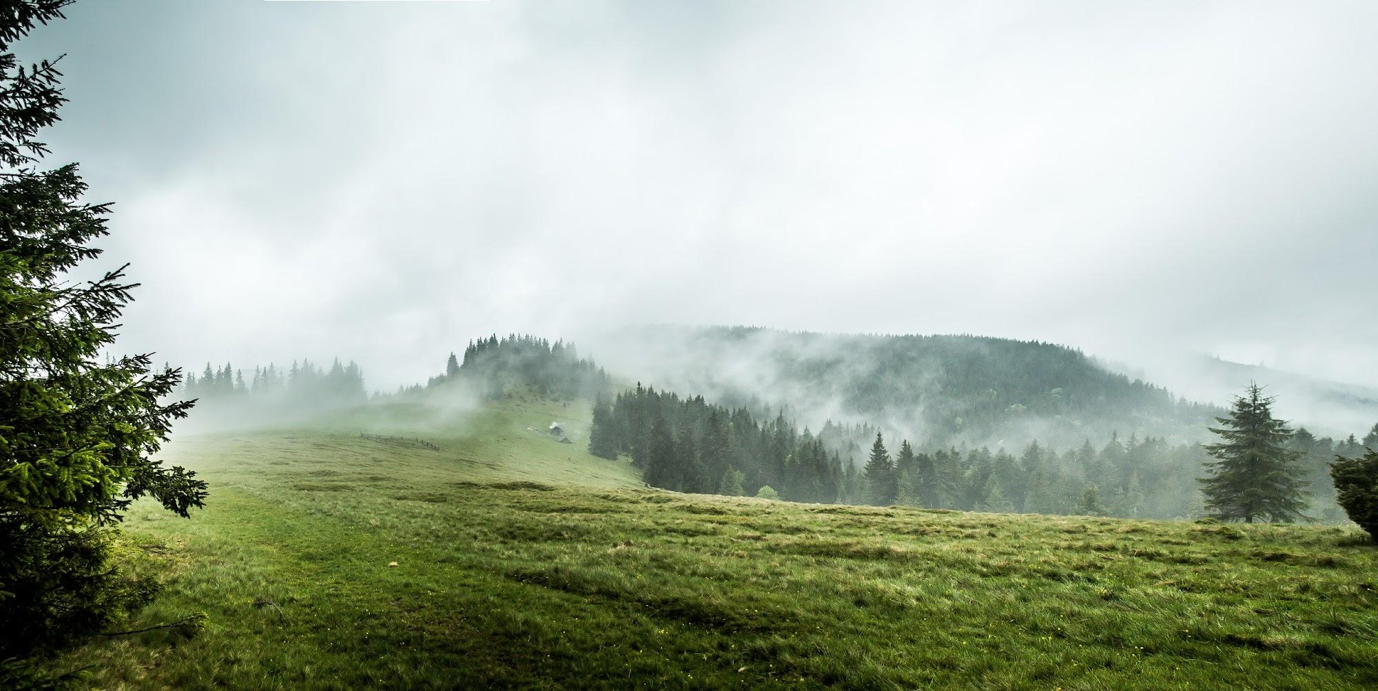 Panorama25.jpg