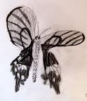 Sketch by Sophia